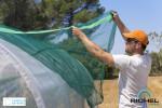 Kit d'ombrage 50% serres et abris longueur 4m